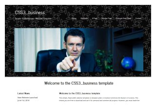 CSS3 business